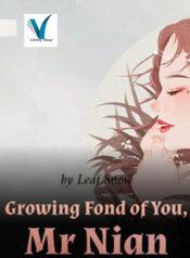 Growing Fond of You, Mr Nian 1
